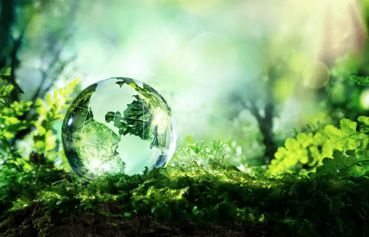 5 Sustainability Trends We're Watching for in 2019